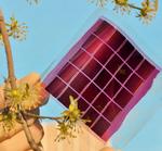 Solarstrom aus Plastikfolien