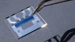 12 Prozent Wirkungsgrad für organische Solarzellen