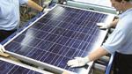Sharp setzt weiter auf den europäischen Solarmarkt