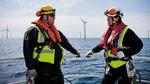 Dänische Windkraft-Weltmeister stoppen die Energiewende