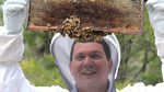 Dr. Paulo de Souza mit Bienenwabe