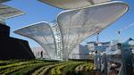 Deutscher Pavillon erstrahlt im LED-Licht