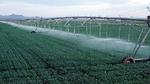 Jeder Sensor in modernen Automationsanlagen, z.B. in der hier dargestellten Feldbewässerungsanlage, könnte in Zukunft seine eigene IP-Adresse haben