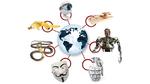 IoT rückt in den Fokus von Cyberkriminellen