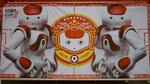 Nao-Roboter im Spiel, RoboCup-Federation