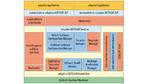 Architektur der AUTOSAR-Adaptive-Plattform