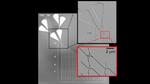 Rasterelektronenmikroskopische Aufnahme eines Netzwerks aus nanofabrizierten Kanälen in drei Vergrößerungen. Die Kanalstrukturen und Kreuzungen sind wenige Hundert Nanometer schmal. Sie werden mittels Elektronenstrahl- Nanolithographie gefertigt und
