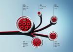 1_Steckverbindert der ECP- und ENP-Serie