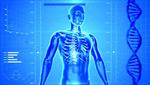 Verarbeitung von medizinischen Bilddaten