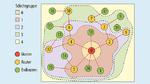 . Um den Master des s-net-Funknetzwerks werden die Teilnehmer in Schichtgruppen geordnet. Die Teilnehmer der Schichtgruppe 1