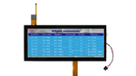 12-Zoll-IPS-TFT-Display im 24:9-Format