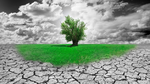 5G: Wie kann die Verfügbarkeit im ländlichen Raum gelingen?