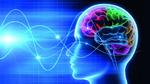 Weltweit erste Anti-Epilepsie-Elektrode implantiert