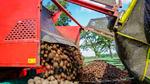 Die 'digitale Verwaltungsschale' der Kartoffel