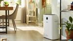 Saubere Luft und optimale Befeuchtung mit einem einzigen Gerät