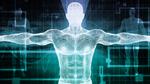 Ganzkörper-3D-Scanner misst den Blutfluss im Körper