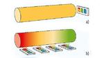Bild 1. (a) Traditionelle Fahrzeuginnenbeleuchtung mit einer einzelnen LED und einem Lichtleiter. (b) Lichtsystem mit einzel-adressierbaren LEDs für dynamische Beleuchtungen