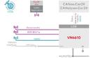 Anschlussmöglichkeiten und Anwendungen des VN4610