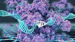 »Crispr-Chip« erkennt Mutationen in Minuten