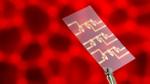 Forscher automatisieren Tests für die Impfstoffentwicklung