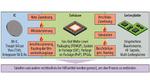 Bild 1. Zwischen dem IC-, Gehäuse- und Leiterplatten-Entwicklungsprozess tun sich tiefe Gräben auf, die mit den bisherigen Entwicklungswerkzeugen nur umständlich überwunden werden können.