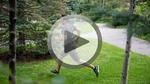 Smartes Exosuit für schnelleres Gehen und Laufen