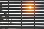 Automatisierte Rollläden am beliebtesten