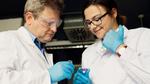 Forscher entwickeln Sensoren aus bioinspirierten Nanoporen