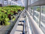 Intelligente Gebäudesteuerung für urbane Landwirtschaft