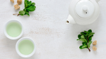 Hilft grüner Tee gegen Antibiotikaresistenzen?