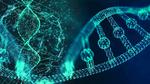 DNA für das Netzwerk der nächsten Generation