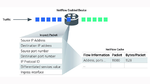 NetFlow und Paketdaten im Vergleich