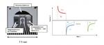 Bild 1. Neu entwickelter Sensorchip zur in-situ Gelöstsauerstoffmessung und zur therapeutischen Sauerstoffproduktion (links). Ablauf einer in-situ Rekalibrierung: Zwei Detektionszyklen folgen einem Generationszyklus (rechts).
