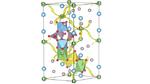 Mit atomaren Simulationen zu neuen Batteriematerialien