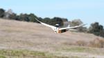 Flug der Robotertaube