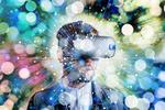 Blitzumfrage zum Thema Augmented und Virtual Reality