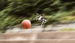 Diese Drohne gewinnt beim Völkerball