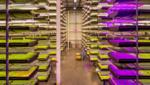 100 Mio. Dollar für Agrartechnologie