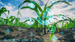 Digitales Wirtschaften auf Feldern und in Ställen