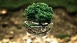 Faulhaber erhält Klimaschutz-Zertifikat