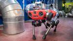 Vierbeiniger Roboter mit drei »Gehirnen«