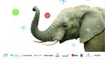 Mit High Tech gegen Afrikas Elefanten-Tragödie