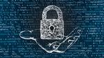 Metadaten sichern schnelle Netze