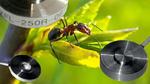 Ultra-Miniaturkraftaufnehmer für kritische Platzverhältnisse