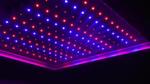 Energiesparende Farb-LEDS für die Pflanzenernährung