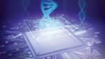 Schlüssel aus der DNA eines Chips