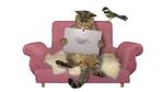 Gadgets für Tiere und ihre Menschen