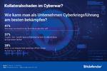 Cyberwar Kollateralschaden, Bitdefender