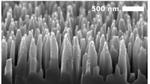 Hochempfindliche Photodiode aus schwarzem Silizium