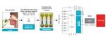 Bild 1. Allgemeine Darstellung der Funktionsweise von Analysatoren für die molekulare Diagnostik am Point-of-Care